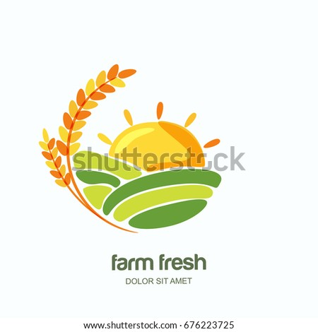 Farm vector logo, label, emblem design. Isolated illustration of wheat fields, farm landscape and sun. Concept for agriculture, organic cereal products, harvesting grain and farming.