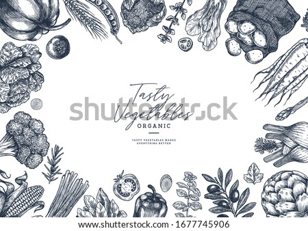 Farm vegetables on white background. Top view. Vegetable growing. Organic fresh vegetables. Summer food concept. Vector illustration