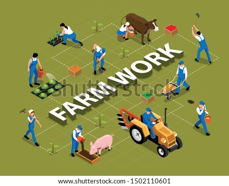 Farm work agricultural duties tools machinery isometric flowchart with milking cow feeding pig harrowing soil vector illustration  Photo stock ©