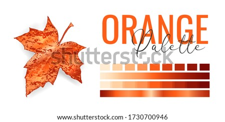 Fashion bright orange metallic color trend. Colour palette with different shades of orange color and gradient. Autumn tree leaf on white background. Paint palette mock up. Vector illustration Stockfoto ©