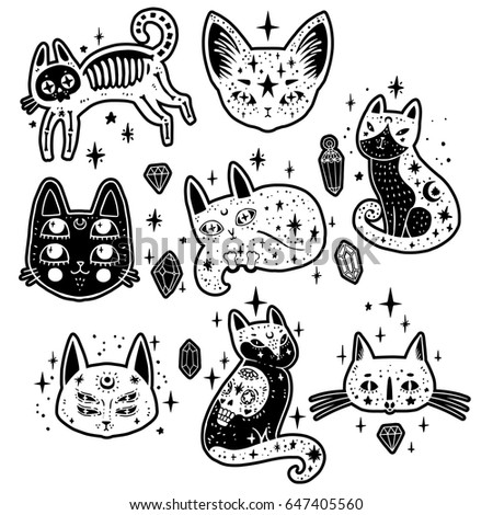 fashion set with cats  stars