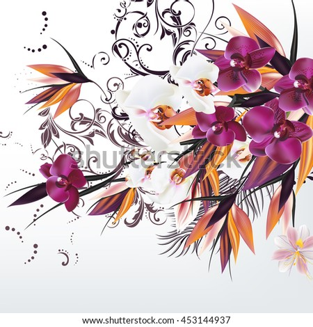 fashion vector background with