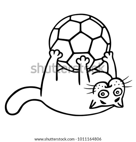 fat cat is caught a soccer ball