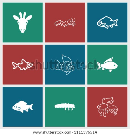 Fauna icon. collection of 9 fauna filled and outline icons such as fish, caterpillar. editable fauna icons for web and mobile.