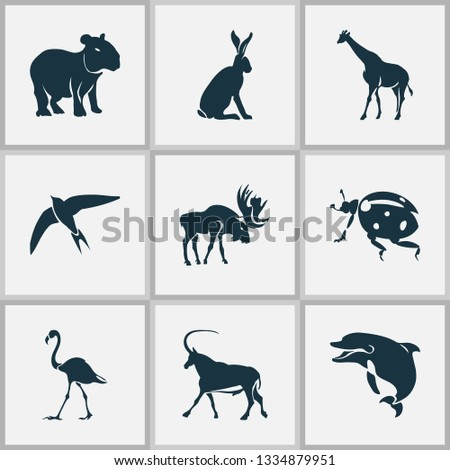 Fauna icons set with capybara, moose, ladybird and other gazelle elements. Isolated vector illustration fauna icons.