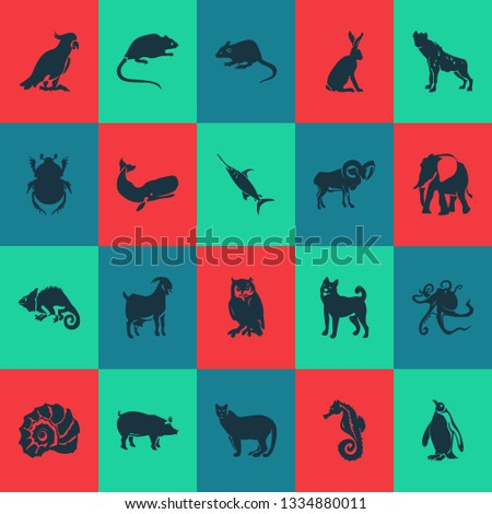 Fauna icons set with elephant, pig, ovis and other parrot elements. Isolated vector illustration fauna icons.