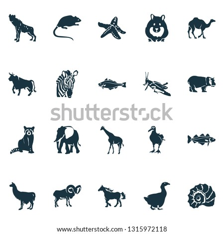 Fauna icons set with grasshopper, elephant, hyena and other horse elements. Isolated vector illustration fauna icons.