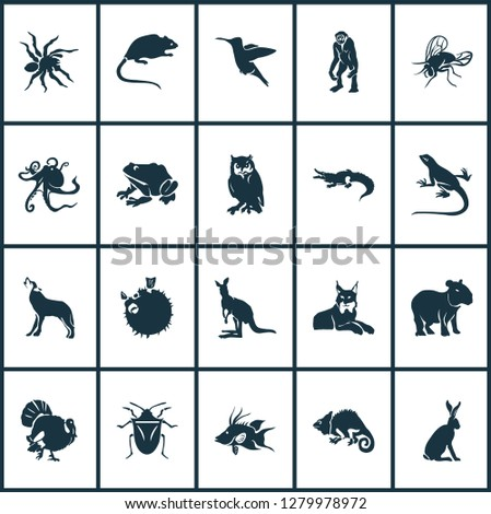 Fauna icons set with turkey, wolf, capybara and other joey elements. Isolated vector illustration fauna icons.