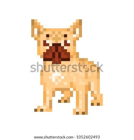 fawn french bulldog  pixel art