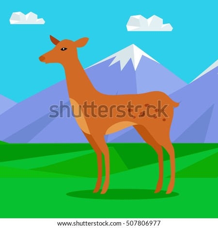 fawn on the lawn in the