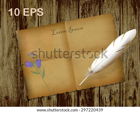 feather and ancient paper on