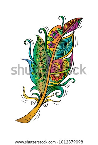 feather birds hand drawing