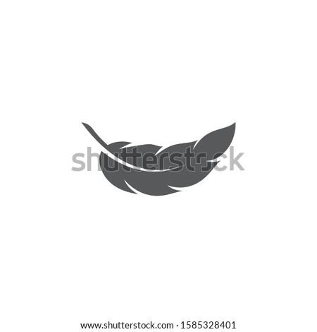 feather logo template vector icon design Foto d'archivio ©