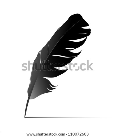 Feather on white background vector