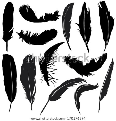 Feather Silhouette Set...