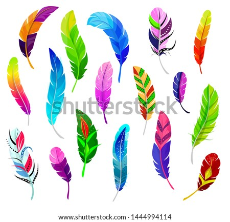 Feather vector fluffy feathering quil and colorful feathery birds plume illustration. set of color feather-pen decor isolated on white background