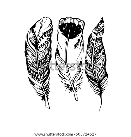 feather vector illustration art ...