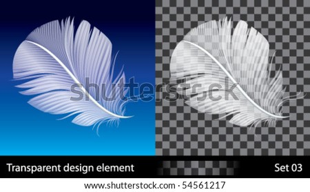 Feather, vector illustration with transparent effect.  EPS (10) file included.
