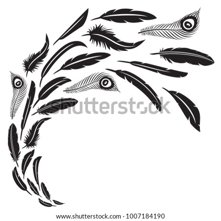 feathers in flight vector...