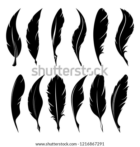 Feathers pen black icon silhouette. Logo goose lightweight feather contour. Vector illustration