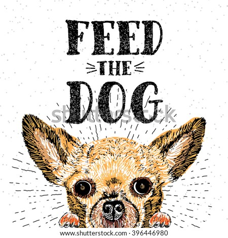 feed the dog vector