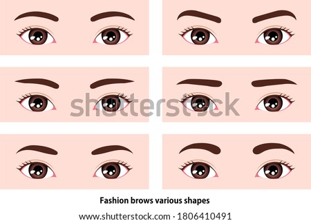 female eyebrows various shapes