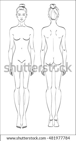 3c19c0938 Female figure  front and back. Vector. Human body in linear style.
