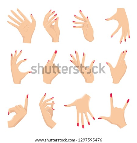 Female hands gestures. Vectors hand holding and pointing, touch and showing pas, different woman arms signals