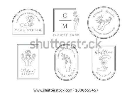 feminine hand logo with olive