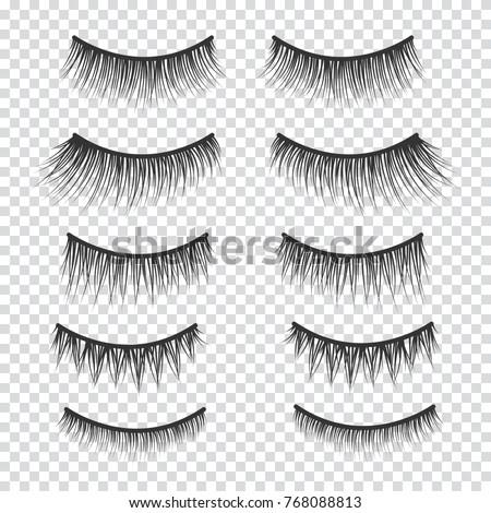 Feminine lashes vector set. False eyelashes hand drawn.