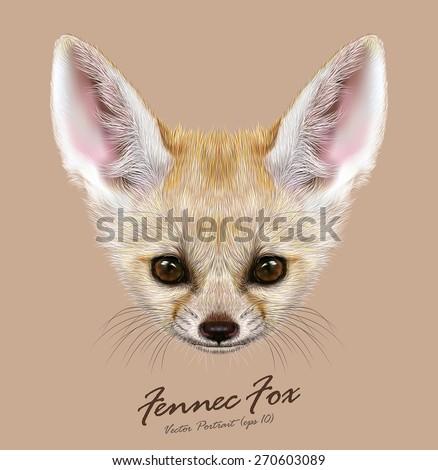 Stock Photo Fennec fox animal cute face. Vector Asian, African, Arabian white fennec fox head portrait. Realistic fur portrait of desert fox isolated on tan background.