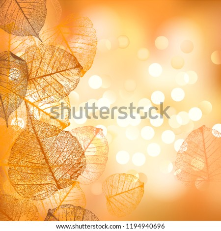 Festive background for Thanksgiving Day or Halloween, a vectorial format