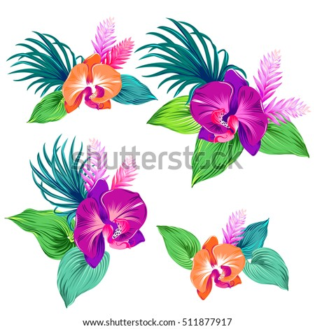 few vector orchid bouquets