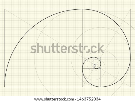 Fibonacci spiral. Vector illustration. Drawing on a sheet of checkered paper with auxiliary lines and the construction scheme. Abstract geometric background for technical design Fibonacci golden ratio