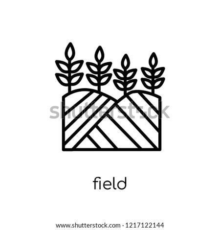 field icon trendy modern flat