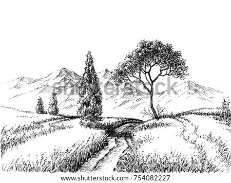 field landscape pencil drawing