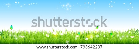 Field of fresh green grass palm, flower, and blue sky with stars. vector illustration.