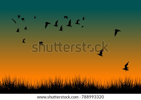 field of grass and silhouettes
