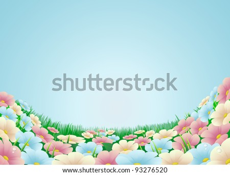 Field or meadow with beautiful flowers and blue sky