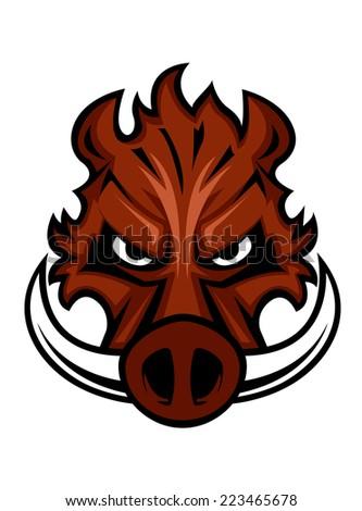 fierce angry wild boar head