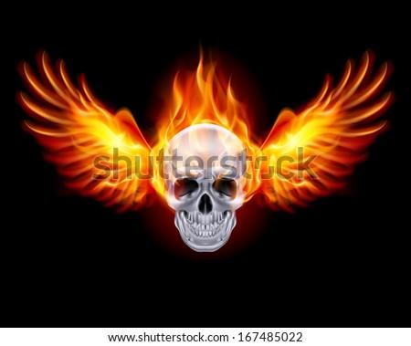 fiery skull with fire wings on