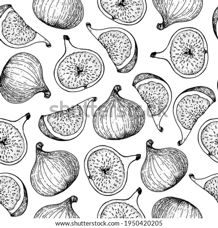 Fig fruit hand drawn package design. Vector illustration. Design, package, brochure illustration. Hand drawn fig fruits seamless pattern. Retro vintage