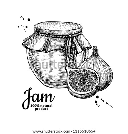 Fig jam glass jar vector drawing.  Fruit Jelly and marmalade.  Hand drawn food illustration. Sketch style vintage objects for label, icon, packaging design.