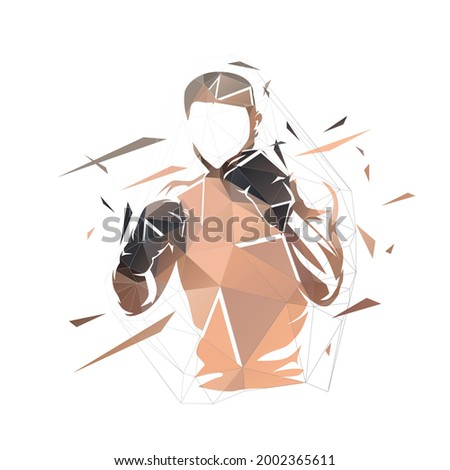 Fighter logo, boxing isolated low polygonal vector illustration, geometric drawing from triangles. Front view, boxing