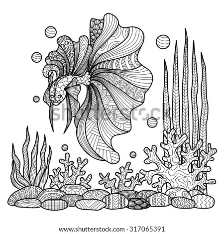 Fighting Fish Drawing For Coloring Book