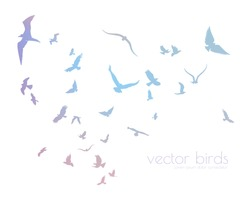 figures multicolored flock of flying birds on white background