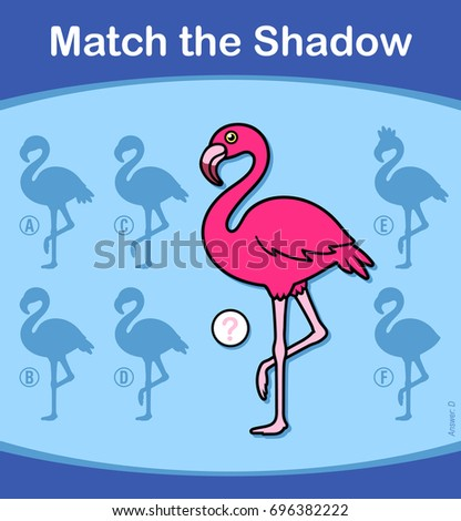 Find the correct shadow, education game for children - flamingo