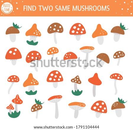 find two same mushrooms autumn