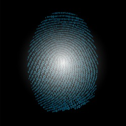 Fingerprint made with binary code concept, vector