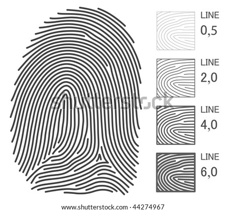 Fingerprint Vector Lines. You can change to any thickness. All details of the fingerprint was made in line. - stock vector